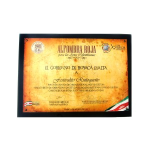 alfombra roja para la musica colombiana 2011